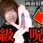 【呪術廻戦】とある重大発表と特級呪物「両面宿儺の指」受肉してみた。