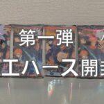 【呪術廻戦】ウエハース第一弾の開封式
