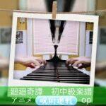 【ピアノソロ初中級】TVアニメ『呪術廻戦』 OPテーマより 廻廻奇譚 / Eve