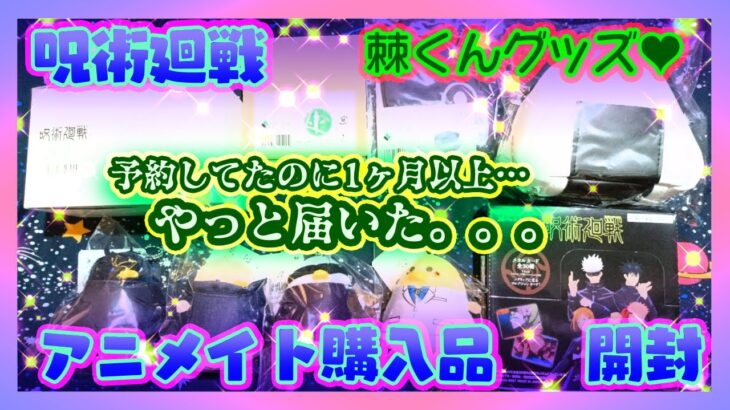 【開封】呪術廻戦 アニメイト購入品【マルイコラボ他】